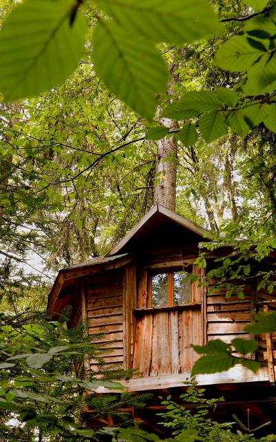 Unusual nights in the Vosges - Adventure farm - Tree house Vosges