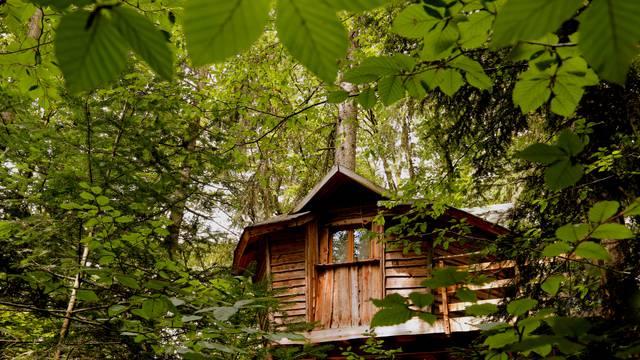 Unusual nights in the Vosges - Adventure farm - Tree house Vosges