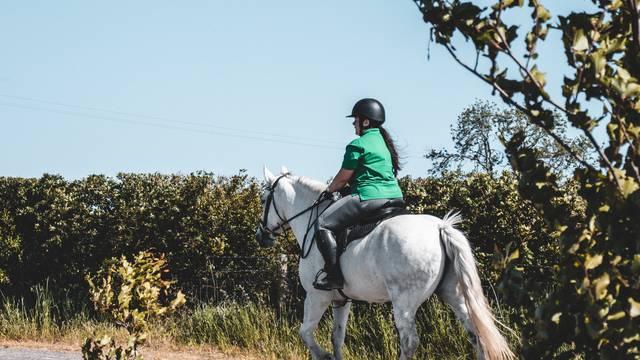 Equestrian tourism