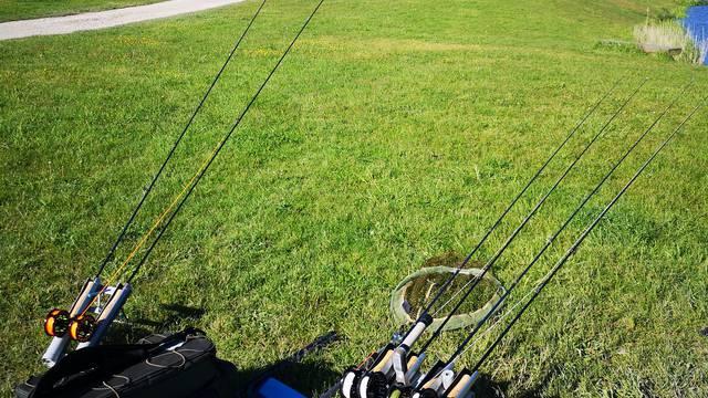 Fishing Vosges - fishing ponds - Socourt - fishing competition Vosges - Carp fishing
