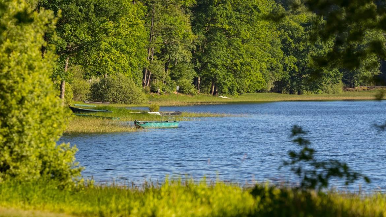 Step 2 : 3.00 p.m. - Bike ride to Lake Bouzey