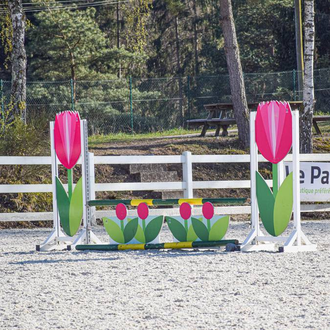Riding centre Epinal - Riding lessons Epinal - Horse riding - Horse riding - Horse riding