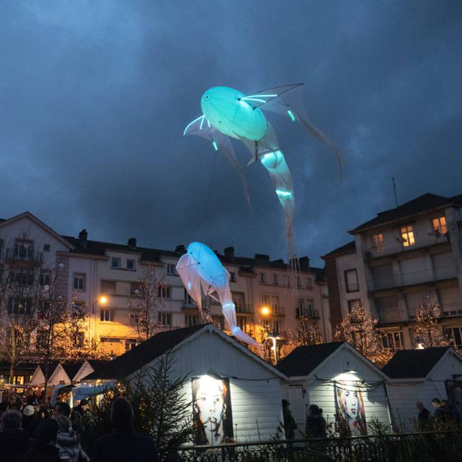 Christmas lights - Epinal Christmas market - Saint-Nicolas village - Epinal Christmas show
